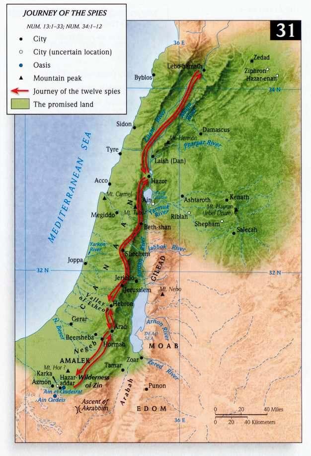 map of canaan in the bible with De Verspieders In Kanaan on Resource as well Atlas besides Condensedbible map detail further De Verspieders In Kanaan in addition Preview Maps.